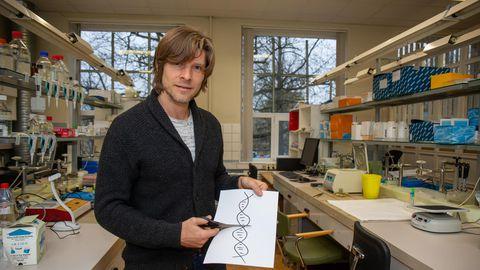 CRISPR Cas9 on tööriist, mis oskab DNA-ahela katki lõigata täpselt õigest kohast, ja aitab ka DNAs üles leida parandamist vajava koha, selgitas biotehnoloog Tõnis Org.