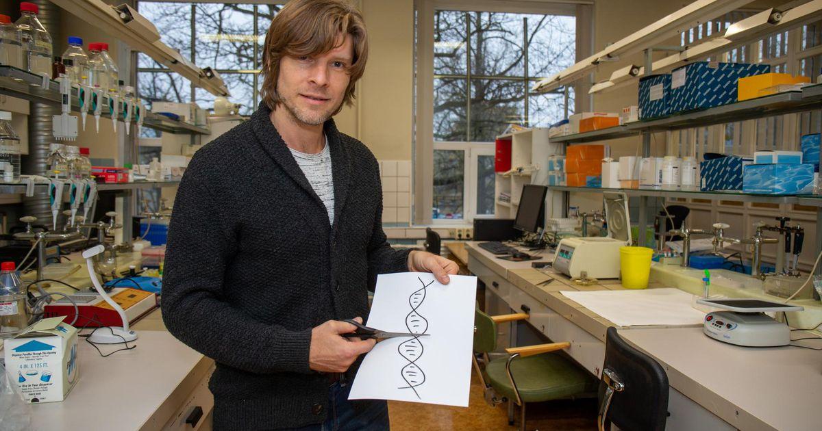 Bakteritelt on õppida midagi, mis aitab inimese geene ravida
