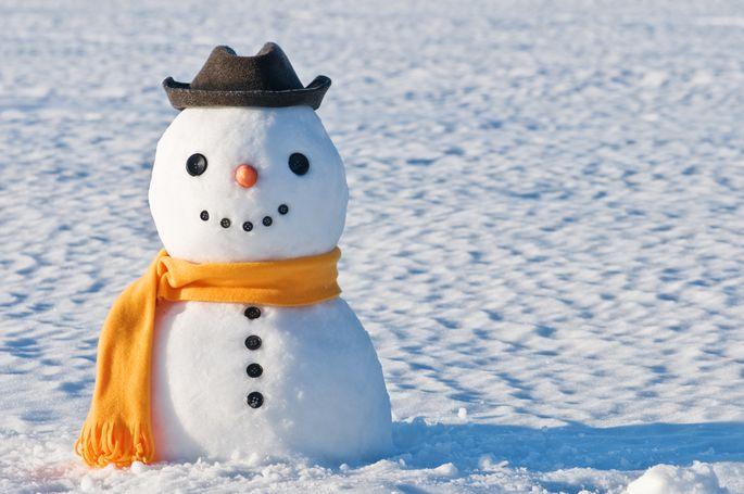 Dobeles sniegavīru saietā šogad kā jaunums būs sniegavīri-džezmeņi ...