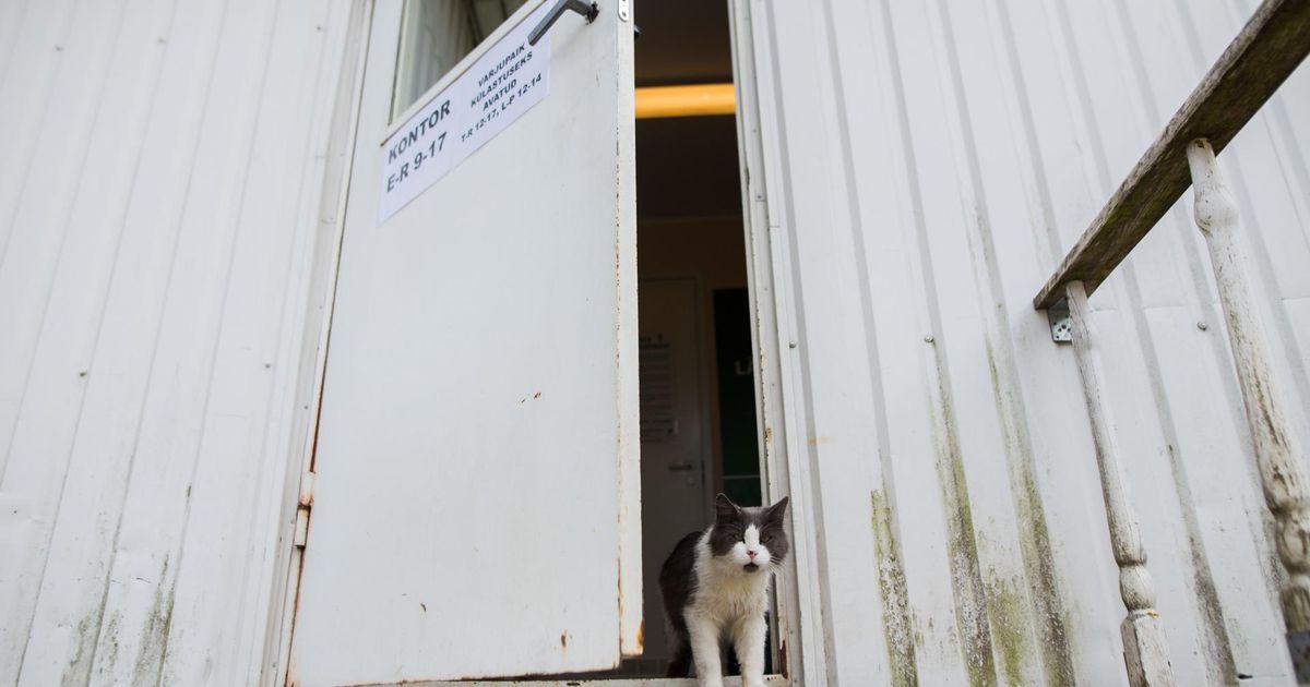 Ühe valla vastuseisu kiuste läks uue varjupaiga ehituse pall veerema