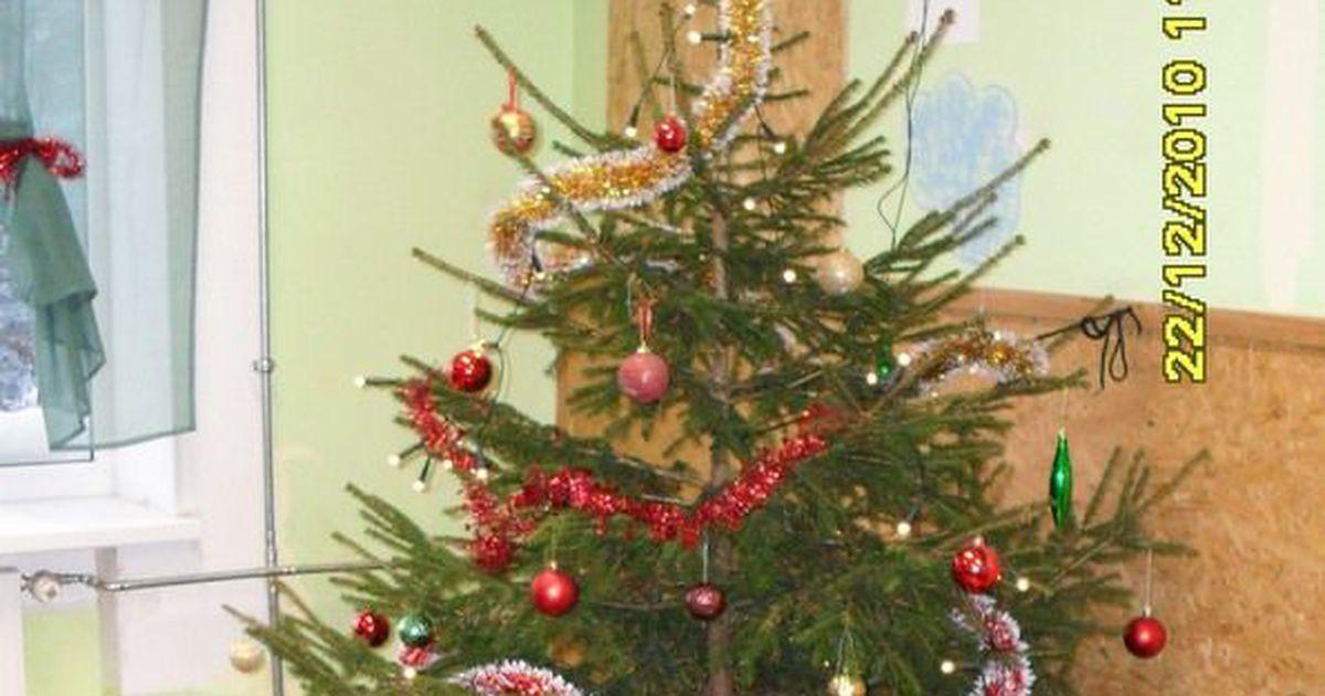 Jõulukuusest polegi nii lihtne lahti saada