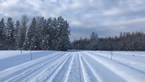 Teed on valdavalt soolaniisked ja teeolud talvised