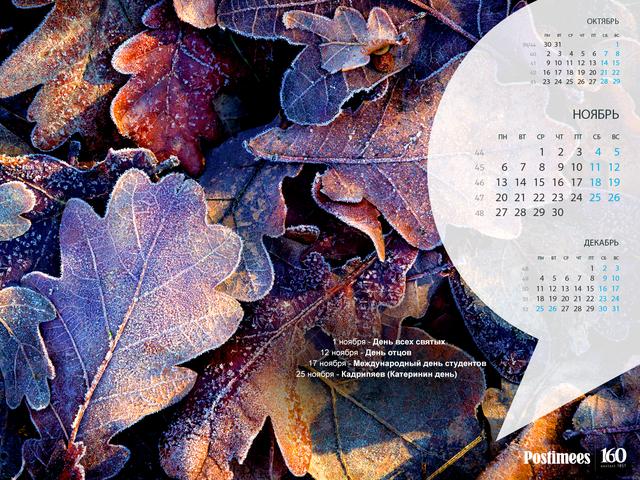 цены Описание народный календарь на ноябрь получила