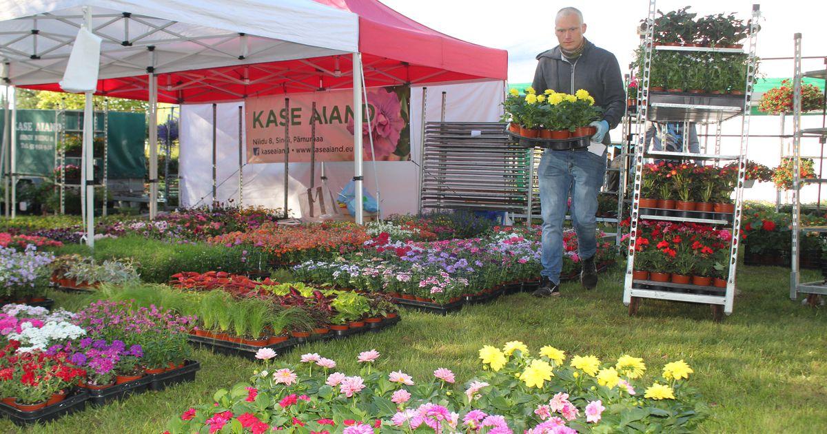 Tugev konkurents ohjab lillelaadal hinnatõusu