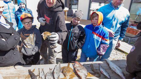 Soovituslike normide järgimisega võib tekkida probleeme kaluritel. Samuti peaks pisut ettevaatlikum olema suuremate räimede söömisega. Illustratiivsel pildil tutvustab Raio Piiroja Ülejõe põhikooli lastele Läänemere kalu.