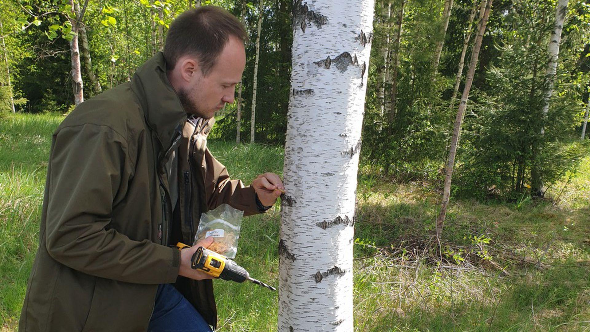 Üle 350 metsaomaniku teenib musta pässikut kasvatades lisatulu