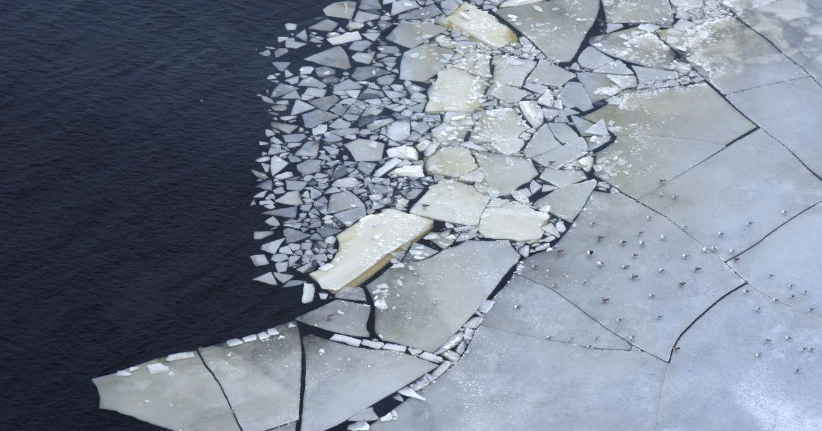 Image result for Зафиксирована гибель людей от наступающей глобальной катастрофы