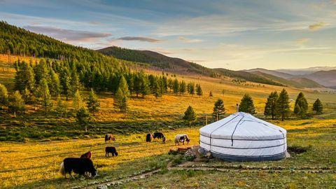 Päikeseloojang Mongoolia mägimaadel, mille külastamist hakatakse piirama sarnaselt Hiinaga seoses närilistelt inimesele kanduva katku epideemia vältimiseks.