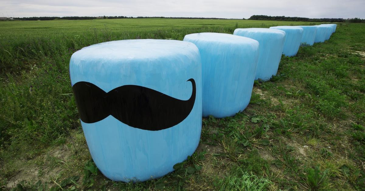 Helesinised silopallid Eestimaa põldudel juhivad tähelepanu olulisele probleemile