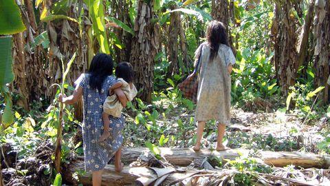 Pildil on sügaval Boliivia Amasoonias elava Tsimane põlisrahvaste hõimu liikmed. Hiljutise uuringu käigus analüüsisid teadlased 5000 hõimuliikme kehatemperatuuri andmeid.